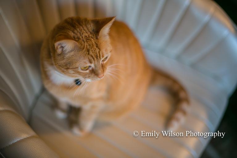Tulsa Photographer Emily Wilson Photography